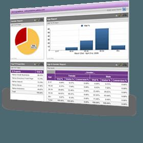 Artikel bebas-Alatan untuk menguji dan mengenali jenis sistem laman web